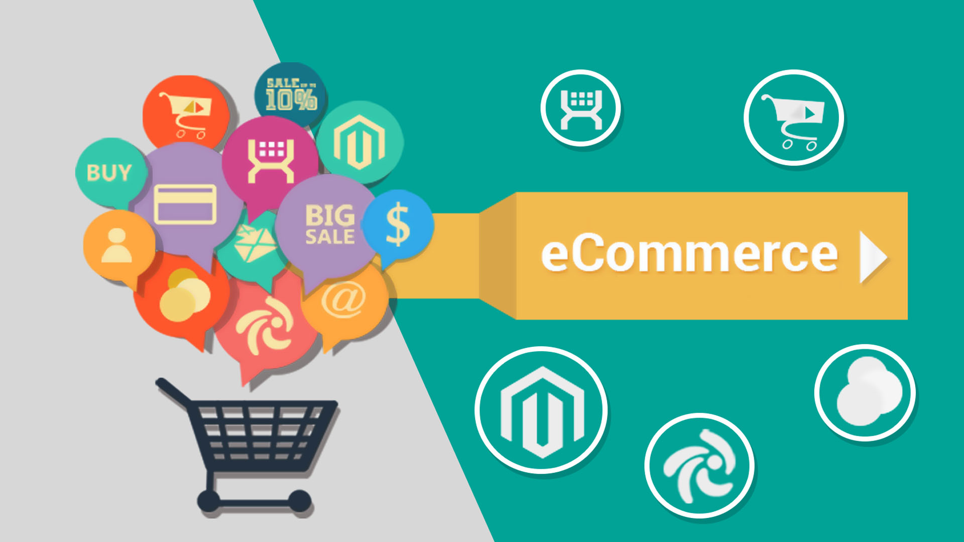 Professional eCommerce Web Design and eCommerce Development: What to Look For